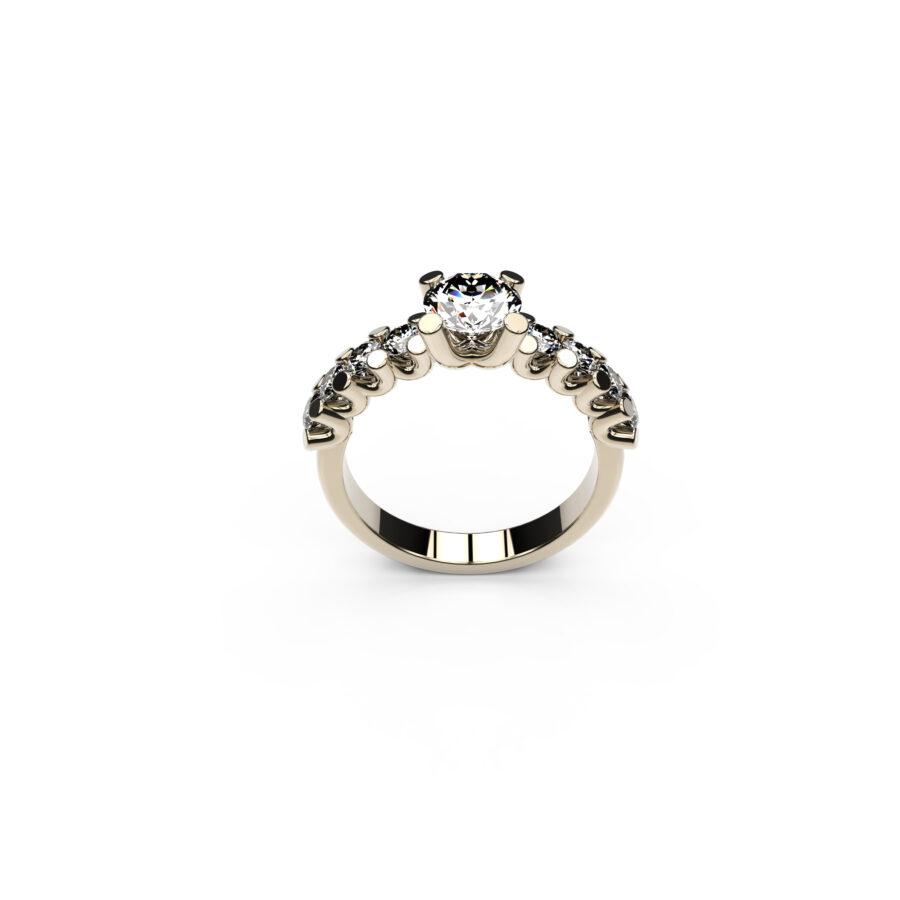 anello con centrale_1