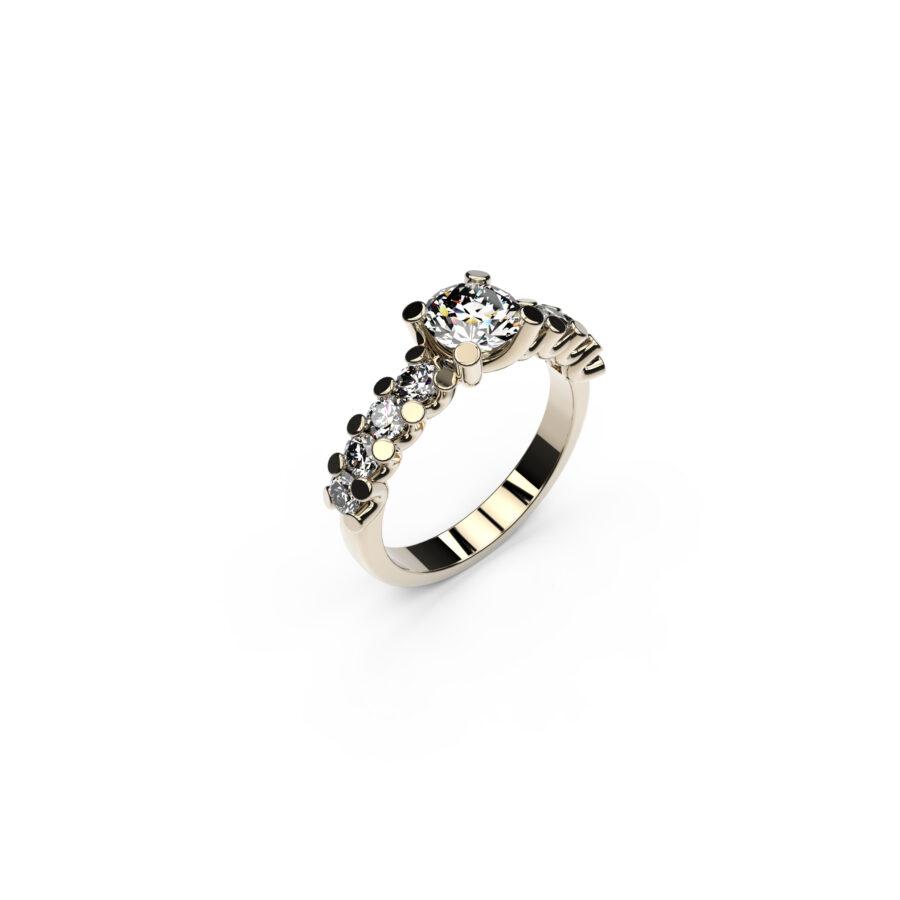 anello con centrale_2